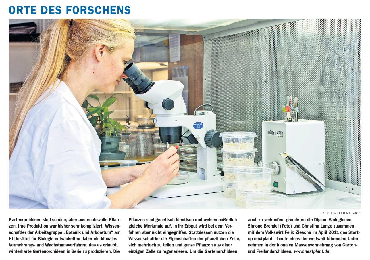 nextplant in der Berliner Zeitung